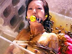 [閲覧注意]うんこ拷問奴隷1 変態志向(旧バッキー系列)